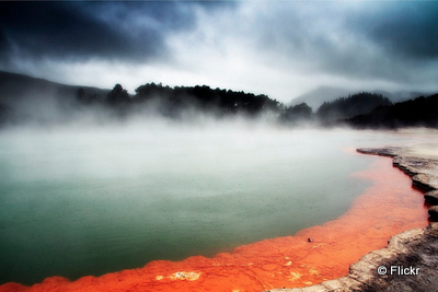 New Zealand Rotorua thermal pools taking to the open road peggy tee flickr