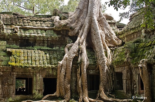 3-days-in-siem-reap-ta-prohm-cambodia-takingtotheopenroad-peggytee-pixabay