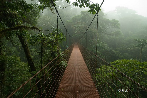 7-days-in-costa-rica-monteverde-cloudforest-takingtotheopenroad-peggy-tee-flickr