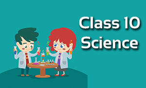 Class 10 Science Online Classes | CBSE | ICSE | NCERT Solutions