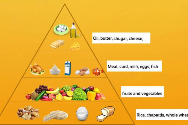 Class 5 Science Balanced Diet Nutrients Pyramid Of Food Chart