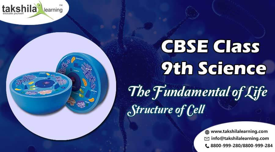 NCERT Solutions for Class 9 Science The Fundamental of Life - Structure of Cell, 9th class science