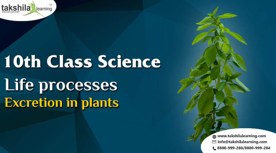 Life Processes - Excretion in Plants Notes for CBSE Class 10th science
