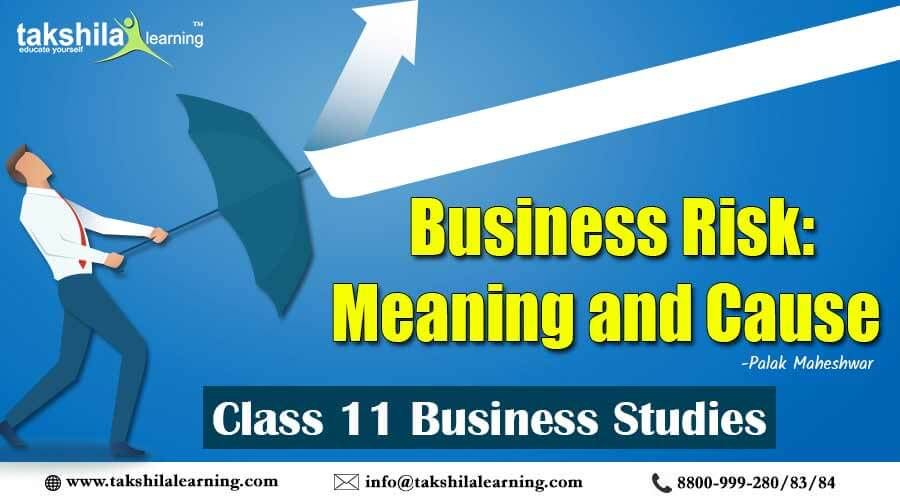 Business Risk : Meaning and Cause : Class 11 Business Study