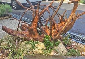流木を使ったオブジェ的な植栽 草津市