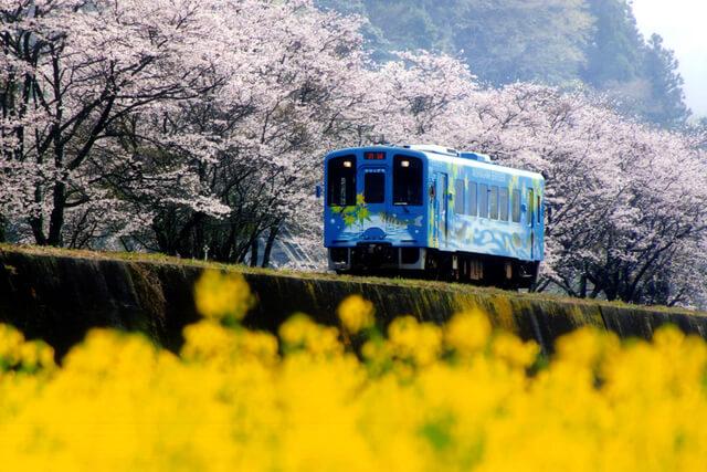 TAKUMI lifestyle - Seiryu Miharashi 2