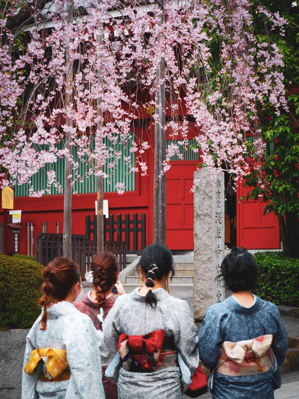 TAKUMI lifestyle - Hanami © Susann Schuster