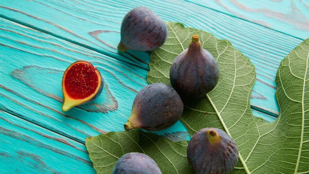 TAKUMI lifestyle - Maria Anna Esposito - Il primo albero coltivato dall'uomo - Il fico - cover