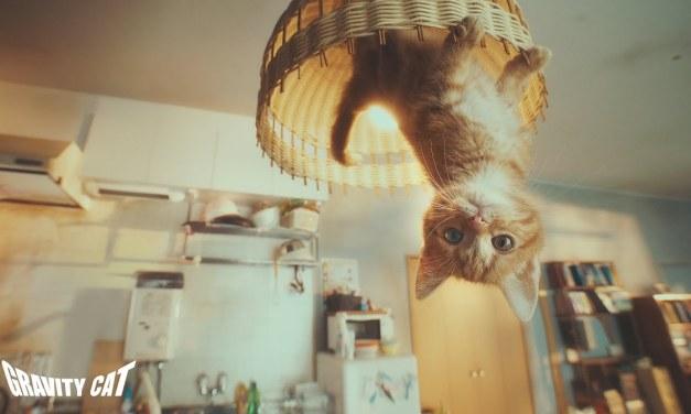 Gravity Rush 2 : Une vidéo renversante pour la promotion japonaise