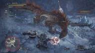 Test-Monster-Hunter-World-Iceborne-018