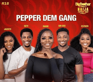 How To Vote On BBNaija Housemate | Apply For BBNaija 2020