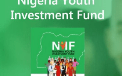 Nigeria Youth Investment Fund | Application Portal Opens Now