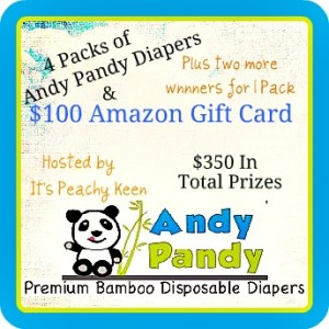 Andy Pandy Disposable Diapers + $100 Amazon Gift Card Giveaway! Ends 11/30