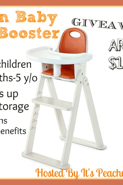 Svan Baby to Booster Giveaway! Ends 12/1