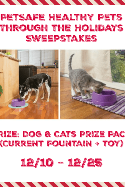 PetSafe Healthy Pets Sweepstakes! 12/25