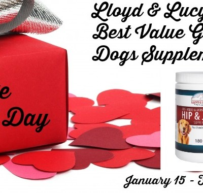 Lloyd & Lucy's Pet Supplies Glucosamine for Dogs Supplement Giveaway 02/14