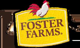 ff-logo-patch