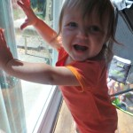 Lark Adventurewear Moisture Wicking Baby Clothing