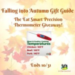 Eat Smart Precision Thermometer Giveaway!