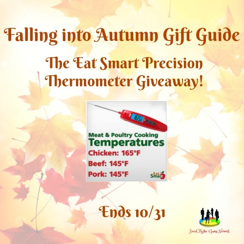 Eat Smart Precision Thermometer Giveaway