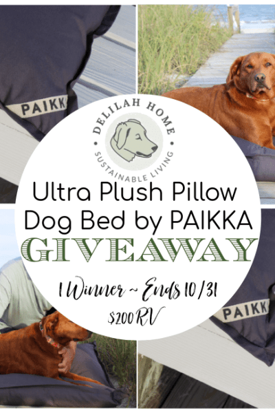 Delilah Home Ultra Plush Pillow Dog Bed by PAIKKA Giveaway