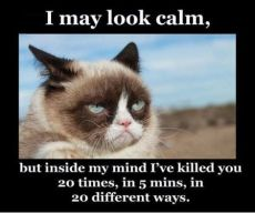 Funniest_Memes_i-may-look-calm-but-inside-my-mind_10475