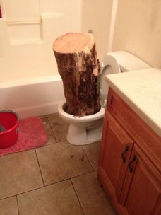 log in toilet
