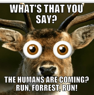 The humans are coming.png