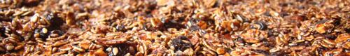 granola1_kl.jpg