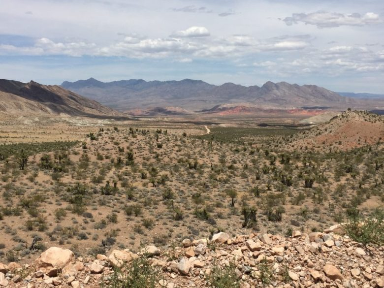 Gold Butte, Townsite, Nevada