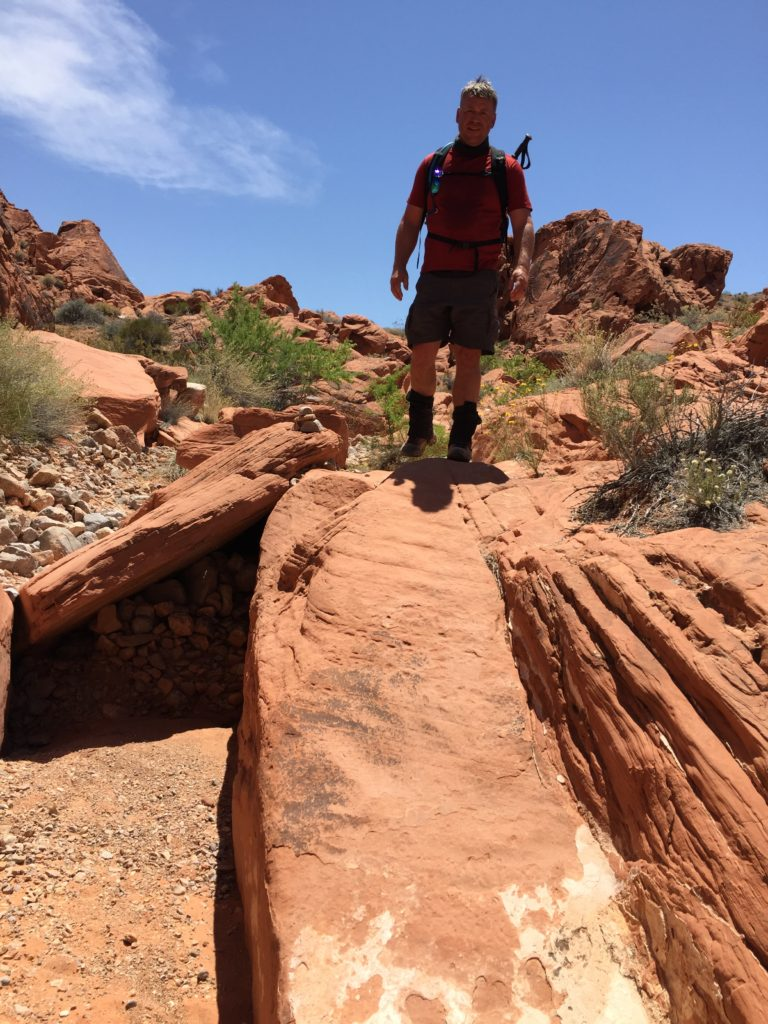 Prospect Trail, Valley of Fire, Nevada, Moapa Valley