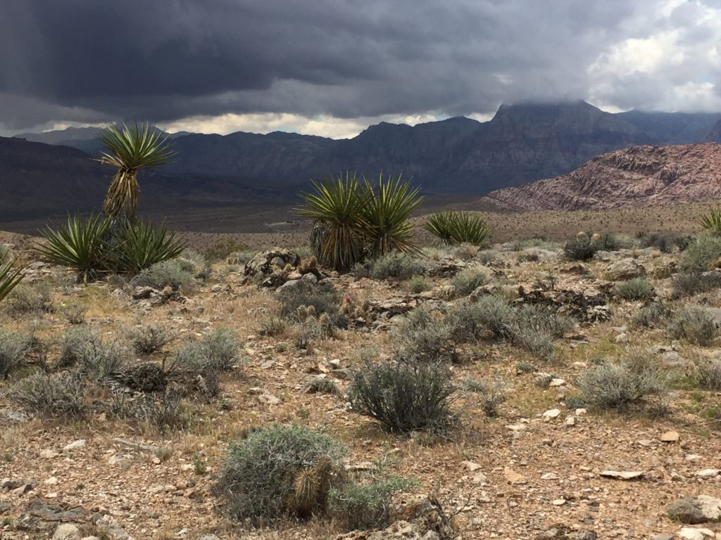 Brownstone Canyon, Las Vegas, Red Rock, RRNCA, Nevada, Pictographs, Petroglyphs, Rock Art, Desert