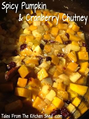 Spicy Pumpkin & Cranberry Chutney