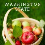 Fall Fun in Washington State