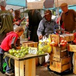 Shop Local and Support Farmers Markets