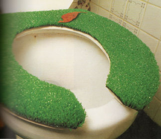 Image result for a picture of a weird toilet seat