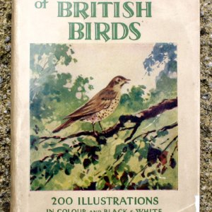 The Observer's Book of British Birds