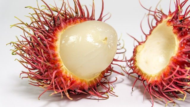 Rambutan fruit opened and ready to eat
