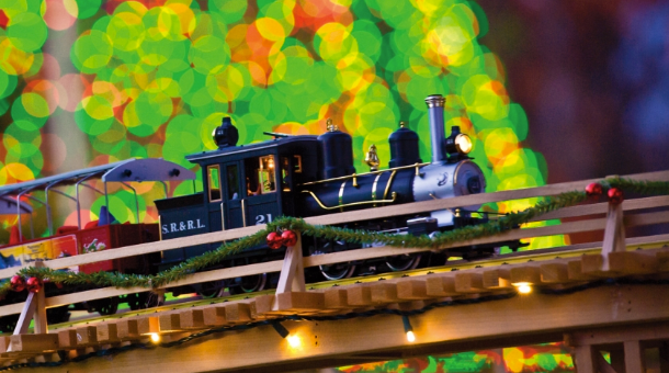 Fall Favorites: Garden Lights Holiday Nights at Atlanta Botanical Garden
