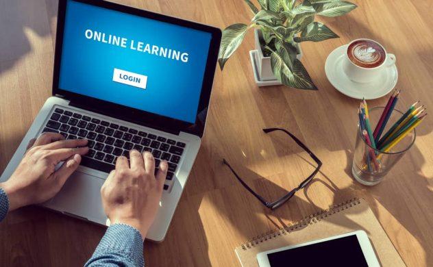 Modern Millionaires online training