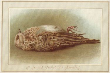 Christmas Death Traditions