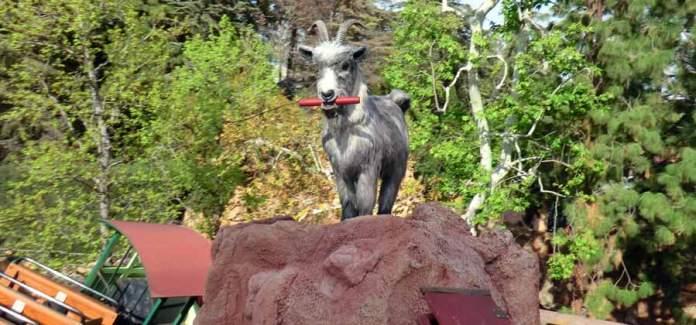 dynamite-wielding-goat