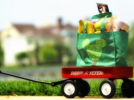 disney groceries