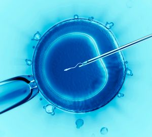 infertility treatment, in vitro fertilization