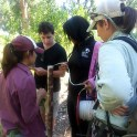 BEMP and YCC - ground water monitoring