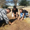 Preparing soil for a native species garden at Valle de Oro National Wildlife Refuge