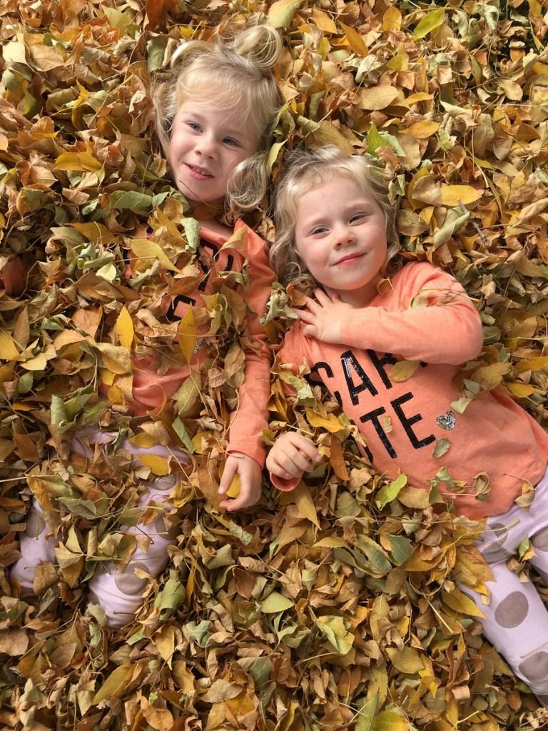 fall-leaves-utah-2016-34