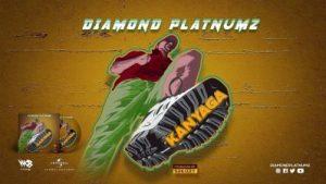 Diamond Platnumz _ Kanyaga