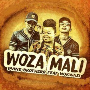 Dvine Brothers Ft. Nokwazi _ Woza Mali