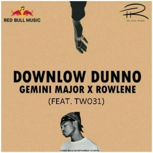 Gemini Major Ft. Rowlene & TW031 _ Downlow Dunno (Remix)